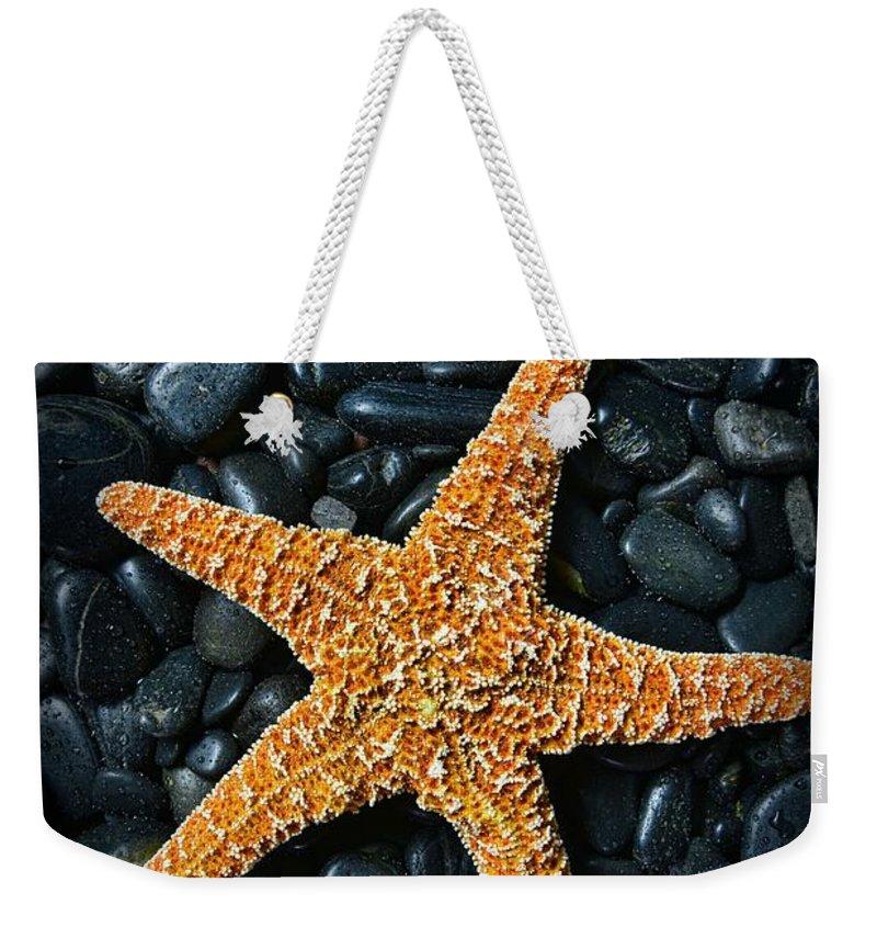Paul Ward Weekender Tote Bag featuring the photograph Nautical - Starfish On Black Rocks by Paul Ward