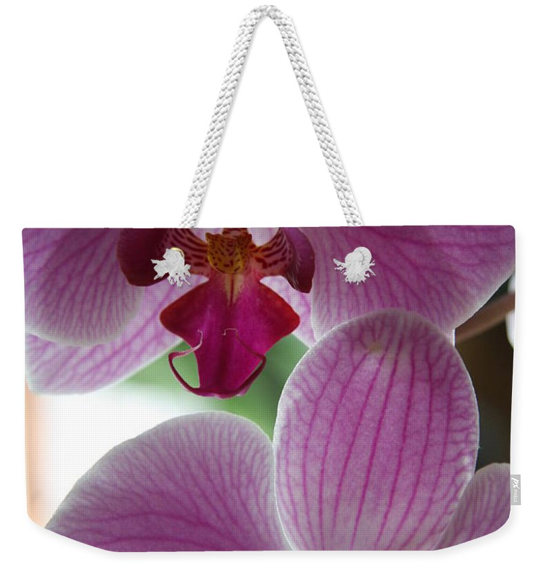 Orchid Weekender Tote Bag featuring the photograph Neat Faces by Christiane Schulze Art And Photography