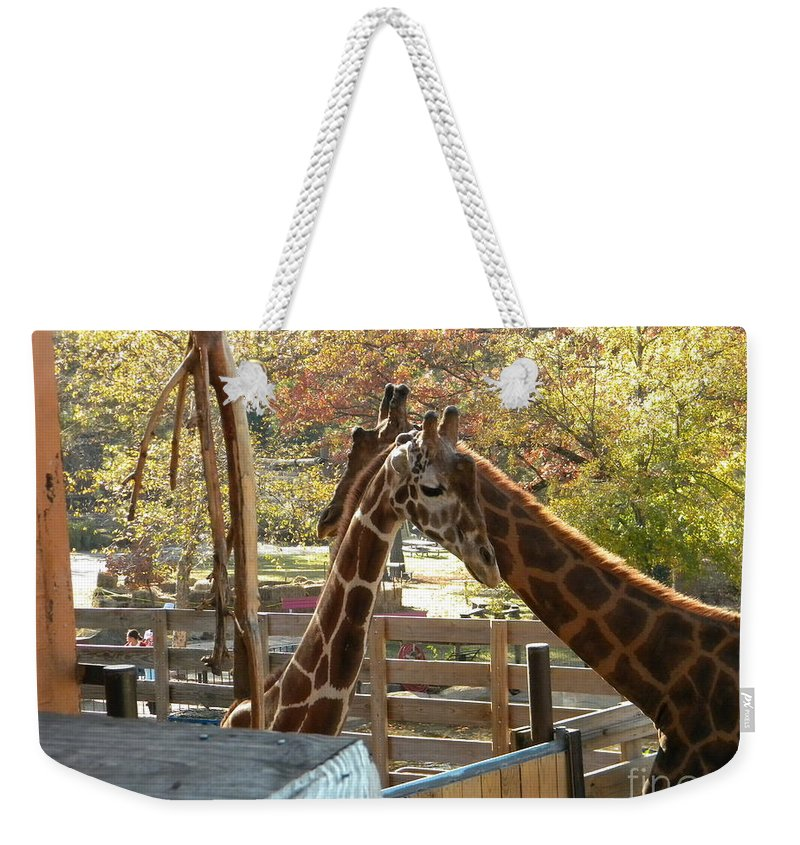 Giraffe Weekender Tote Bag featuring the photograph Neck 'n Neck by Nathanael Smith
