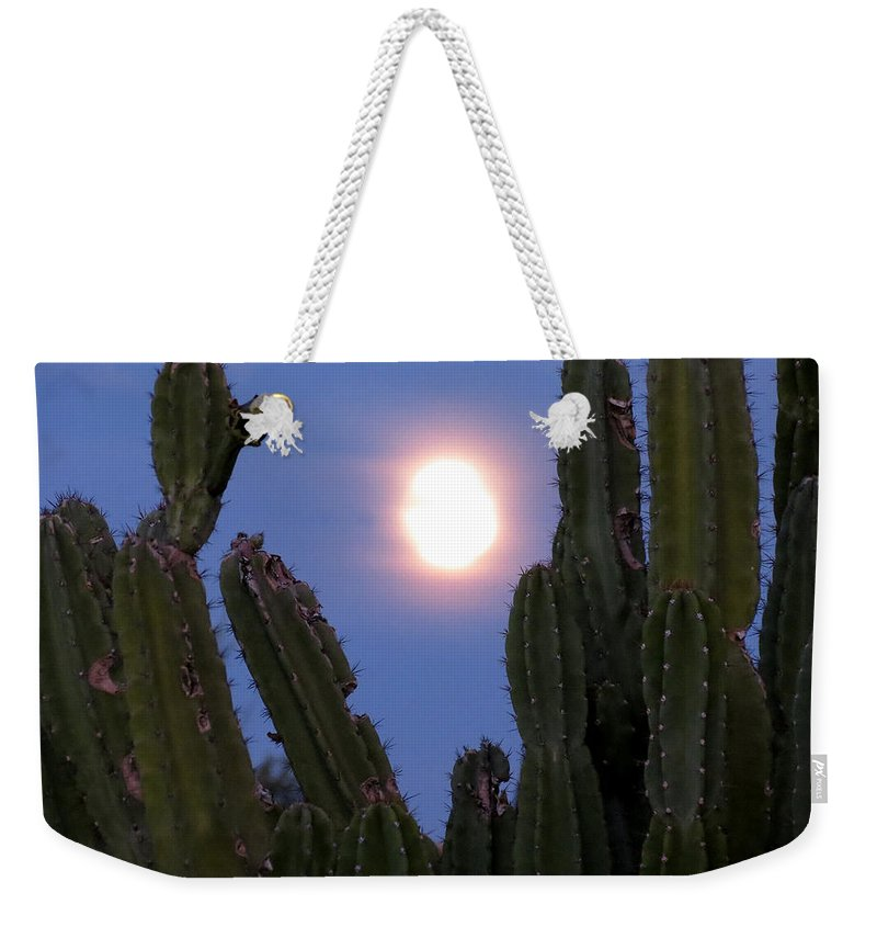 Moon Weekender Tote Bag featuring the photograph Needles Around The Moon by Laurel Powell
