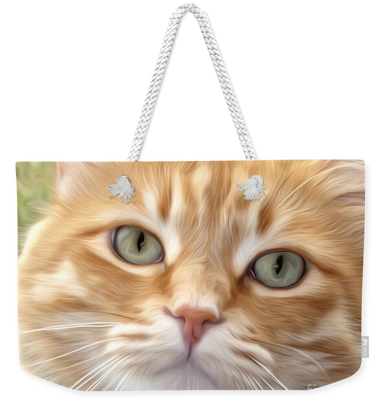 Cat Weekender Tote Bag featuring the photograph Yellow Cat Digital Art by Dianne Phelps