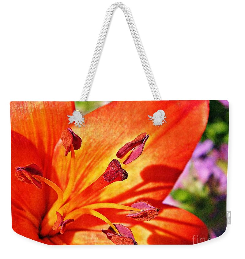 Nature Weekender Tote Bag featuring the photograph Neon Asiatic by Chris Berry