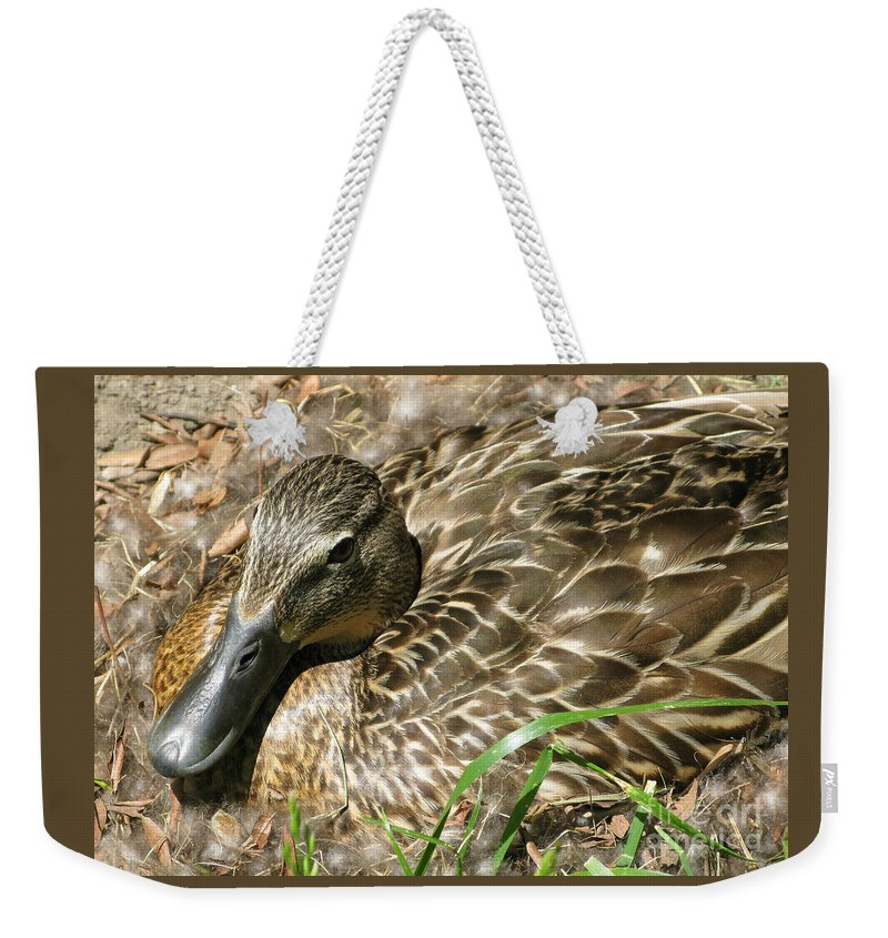 Mallard Weekender Tote Bag featuring the photograph Nesting Mallard by Ann Horn
