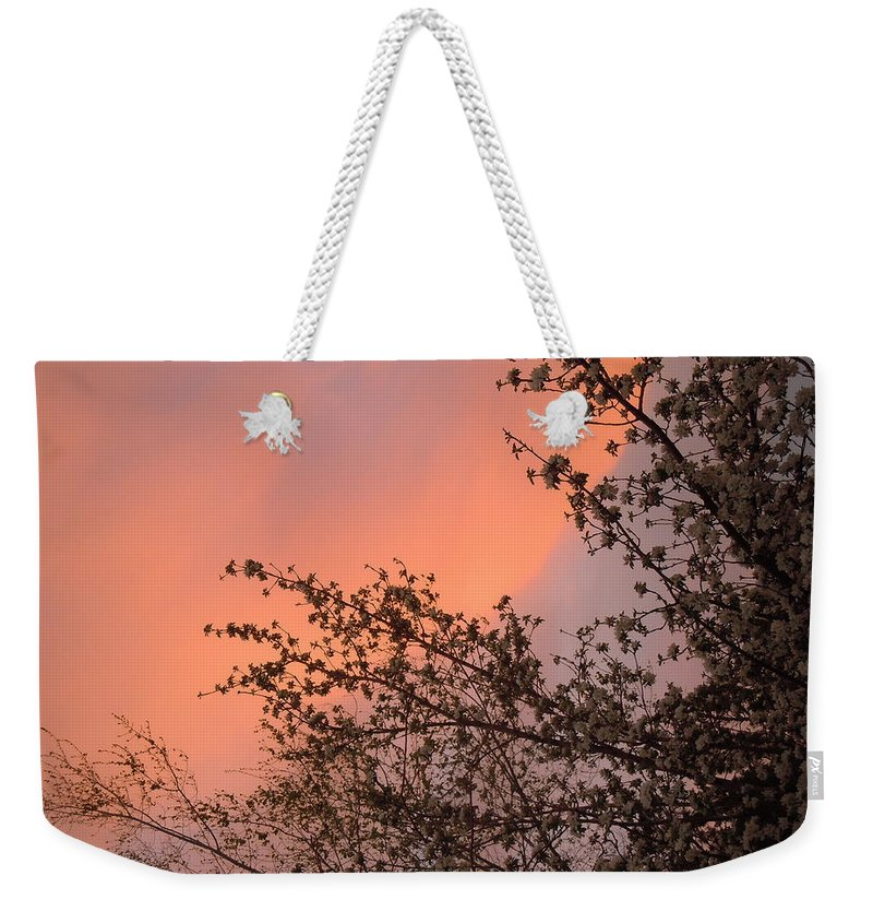 Sunrise Weekender Tote Bag featuring the painting Nevada Sunrise by Dan Whittemore