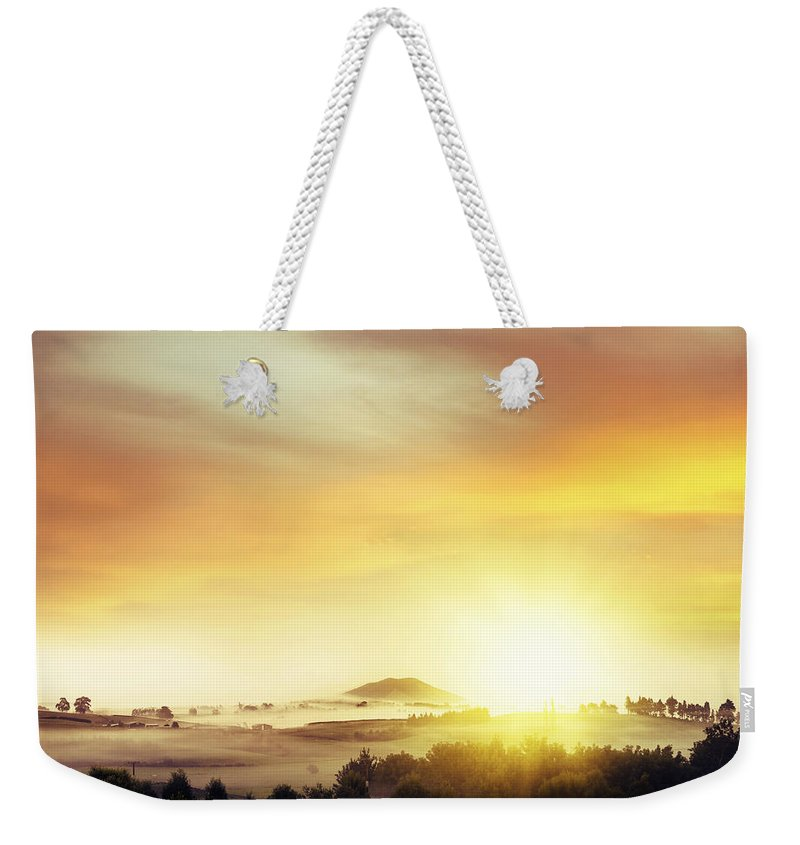 Nature Weekender Tote Bag featuring the photograph New Beginning by Les Cunliffe