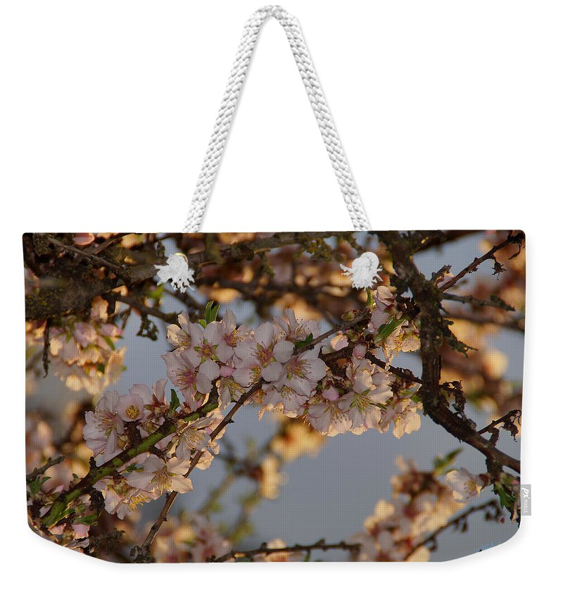 New Weekender Tote Bag featuring the photograph New Blossoms - Old Almond Tree by Mick Anderson