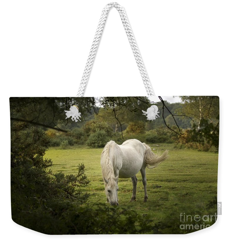 New Forest Weekender Tote Bag featuring the photograph New Forest Pony by Angel Ciesniarska