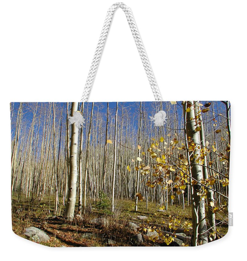Landscape Weekender Tote Bag featuring the photograph New Mexico Series - Bare Autumn by Kathleen Grace