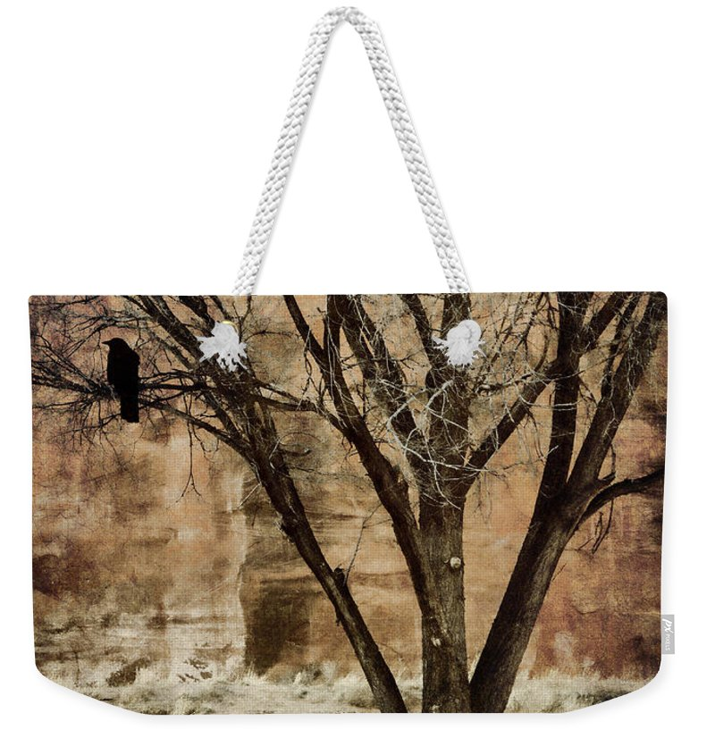 Designs Similar to New Mexico Winter