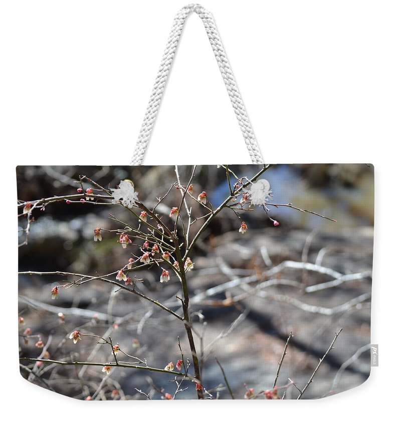 High Falls State Park Weekender Tote Bag featuring the photograph New Spring Buds by Tara Potts