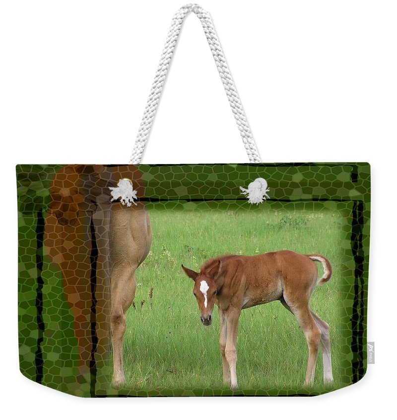 Foal Weekender Tote Bag featuring the photograph New To The World by Shannon Story
