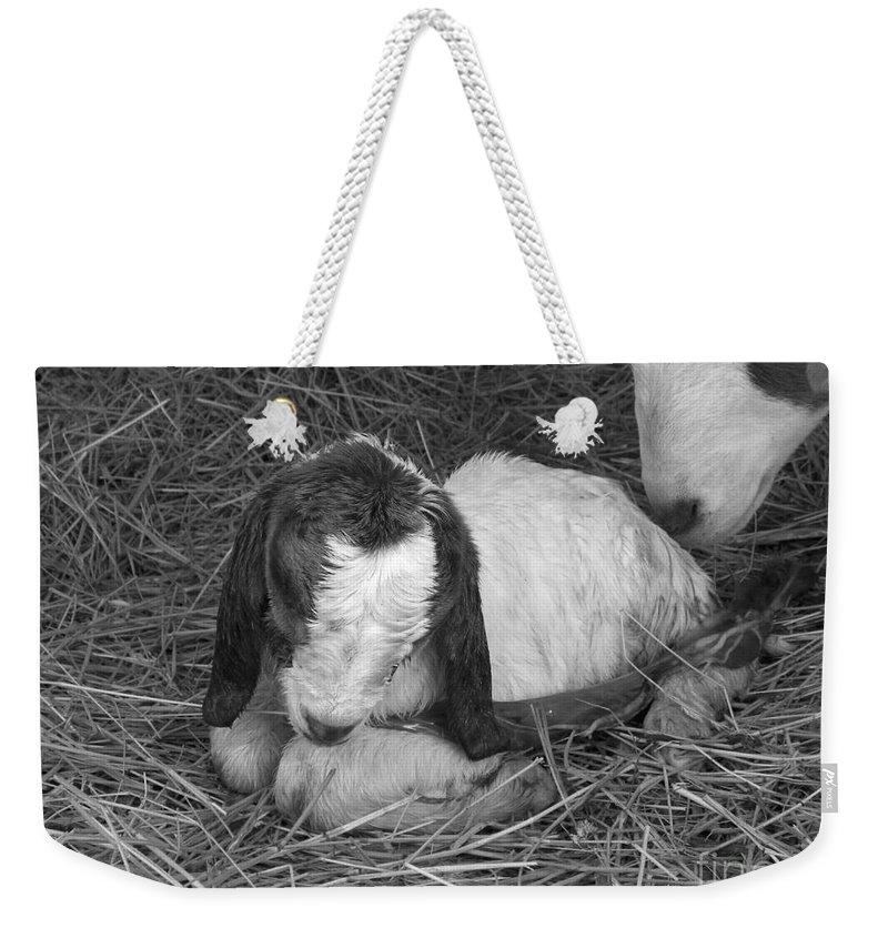 Kid Weekender Tote Bag featuring the photograph Newborn by Sheri Lauren