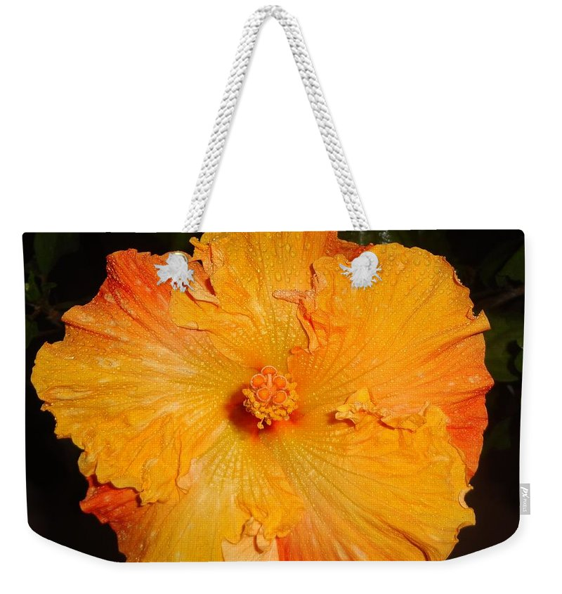 Hibiscus Weekender Tote Bag featuring the photograph Night Bloom by Maria Bonnier-Perez