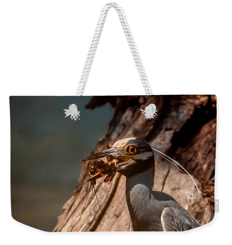 Animal Weekender Tote Bag featuring the photograph Night Heron And Crawdaddy by Robert Frederick