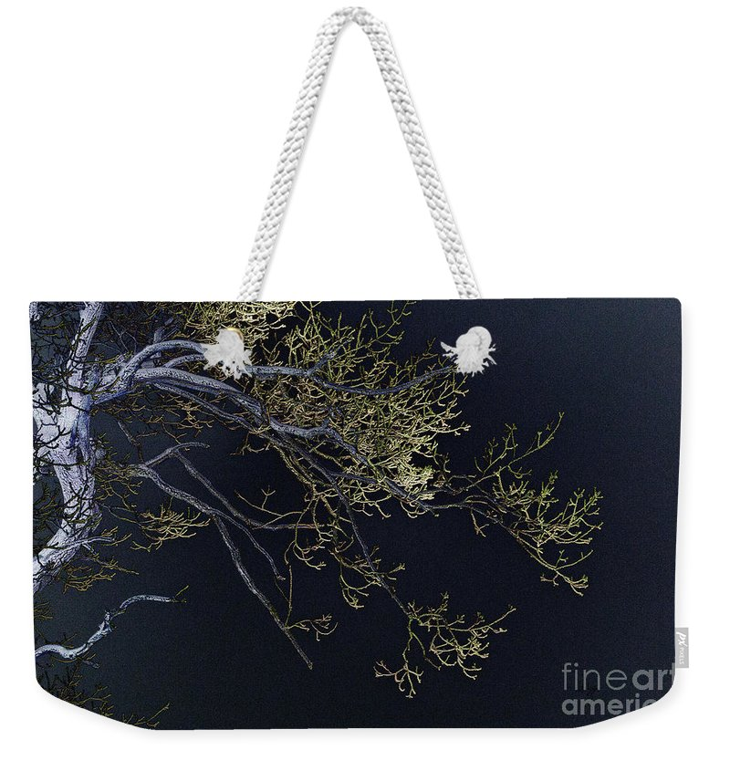 Tree Weekender Tote Bag featuring the photograph Night by Lois Bryan