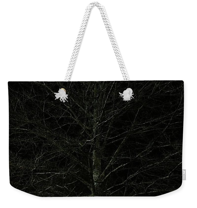 Nigh Time Weekender Tote Bag featuring the photograph Night Tree by Joseph Yarbrough