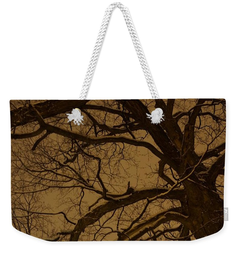 Trees Weekender Tote Bag featuring the photograph Night View by Jeffery L Bowers