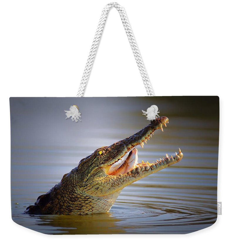 Crocodile Weekender Tote Bag featuring the photograph Nile Crocodile Swollowing Fish by Johan Swanepoel