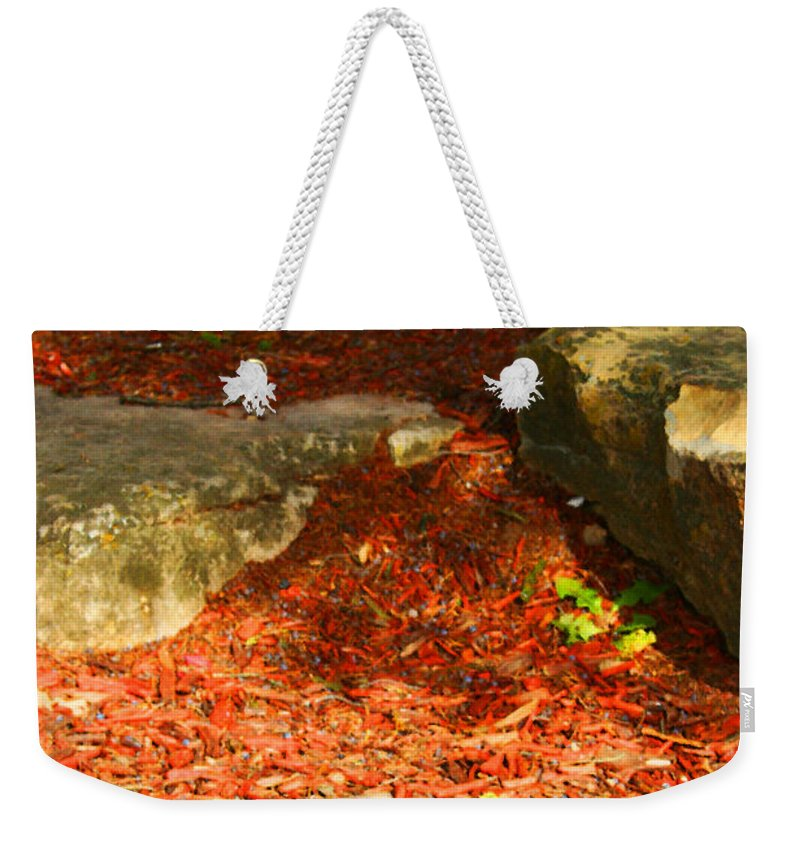 Tree Weekender Tote Bag featuring the photograph Nome Land by Jamie Lynn