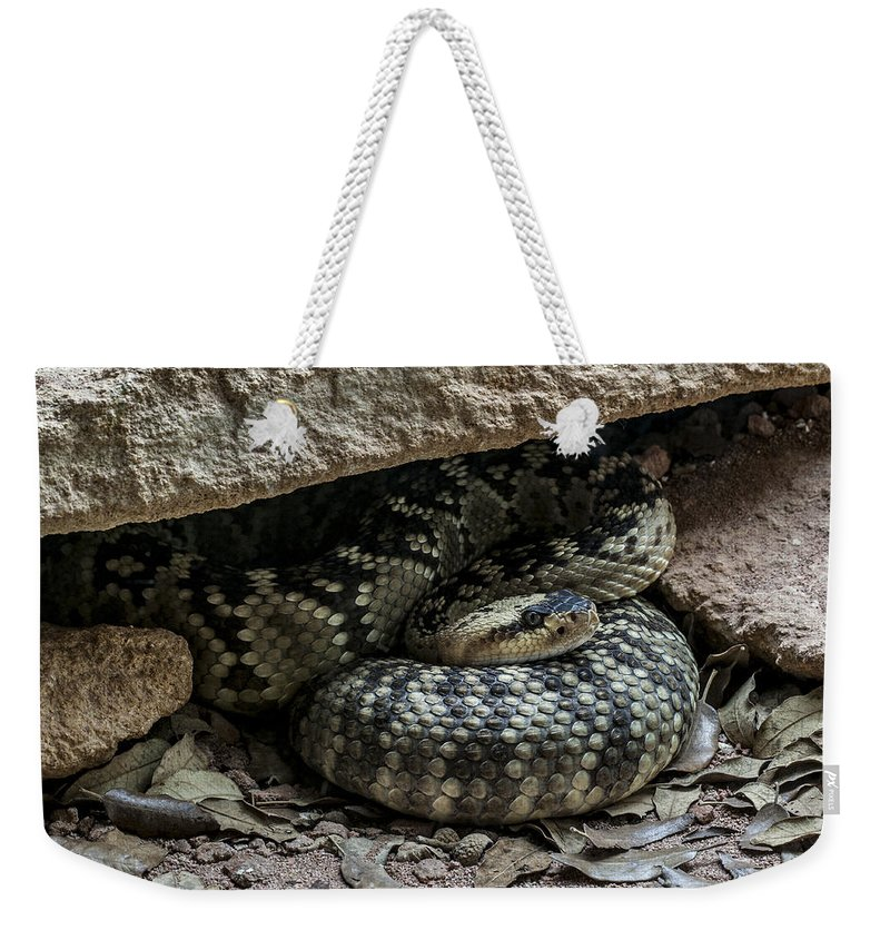 Northern Black-tailed Rattlesnake Weekender Tote Bag featuring the photograph Northern Black-tailed Rattlesnake 2 by Arterra Picture Library