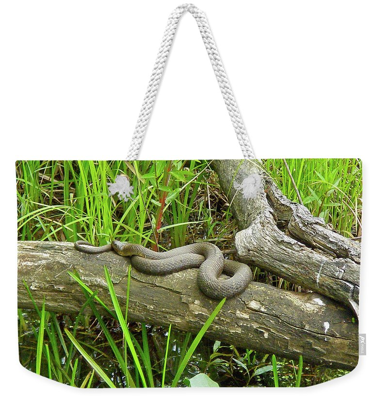 Snake Weekender Tote Bag featuring the photograph Northern Water Snake - Nerodia Sipedon by Mother Nature