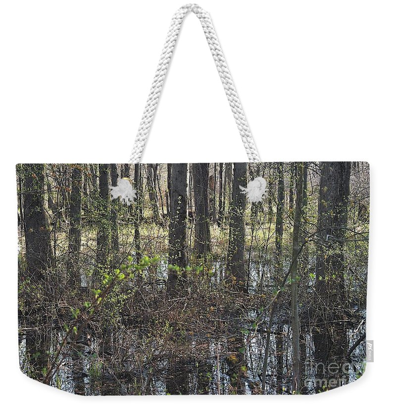 Creek Weekender Tote Bag featuring the photograph Not A Chance by Joseph Yarbrough