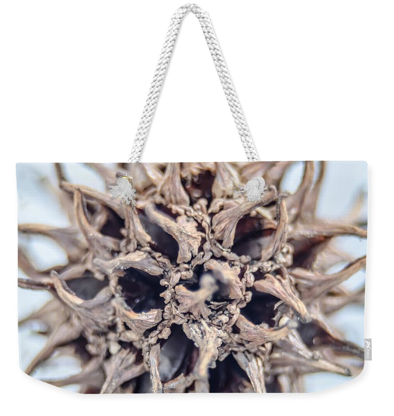 Tree Weekender Tote Bag featuring the photograph nut by Alex Grichenko
