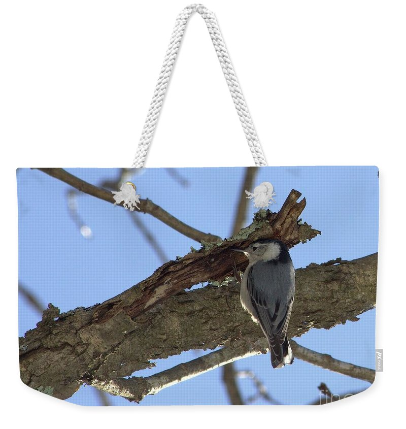 Bird Weekender Tote Bag featuring the photograph Nuthatch Getting To The Good Stuff by Kenny Glotfelty