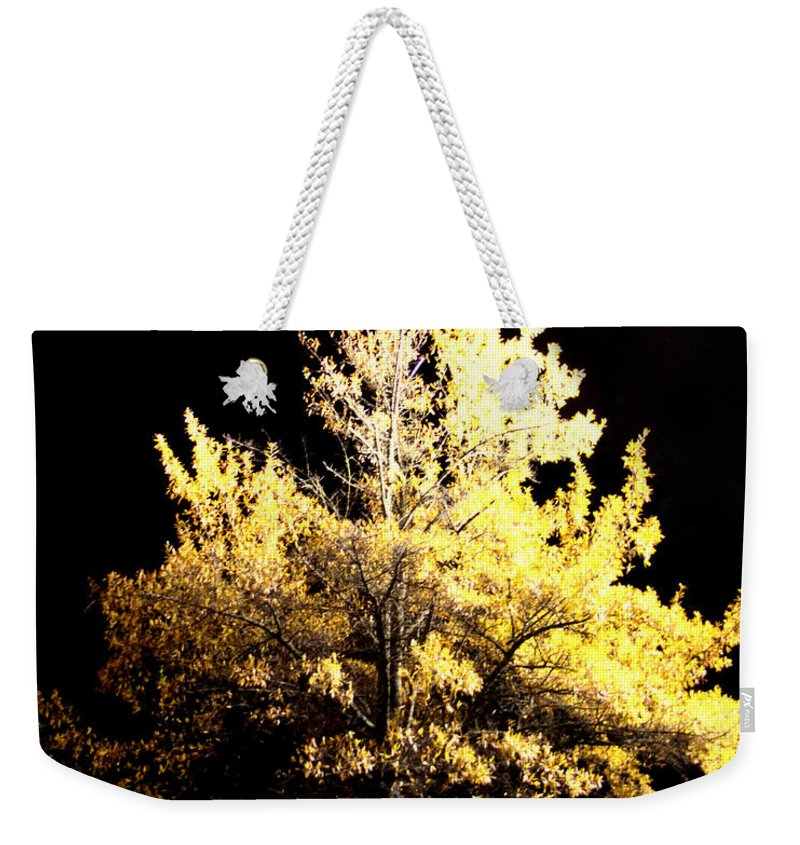 Night Weekender Tote Bag featuring the photograph Oak At Night by Travis Truelove