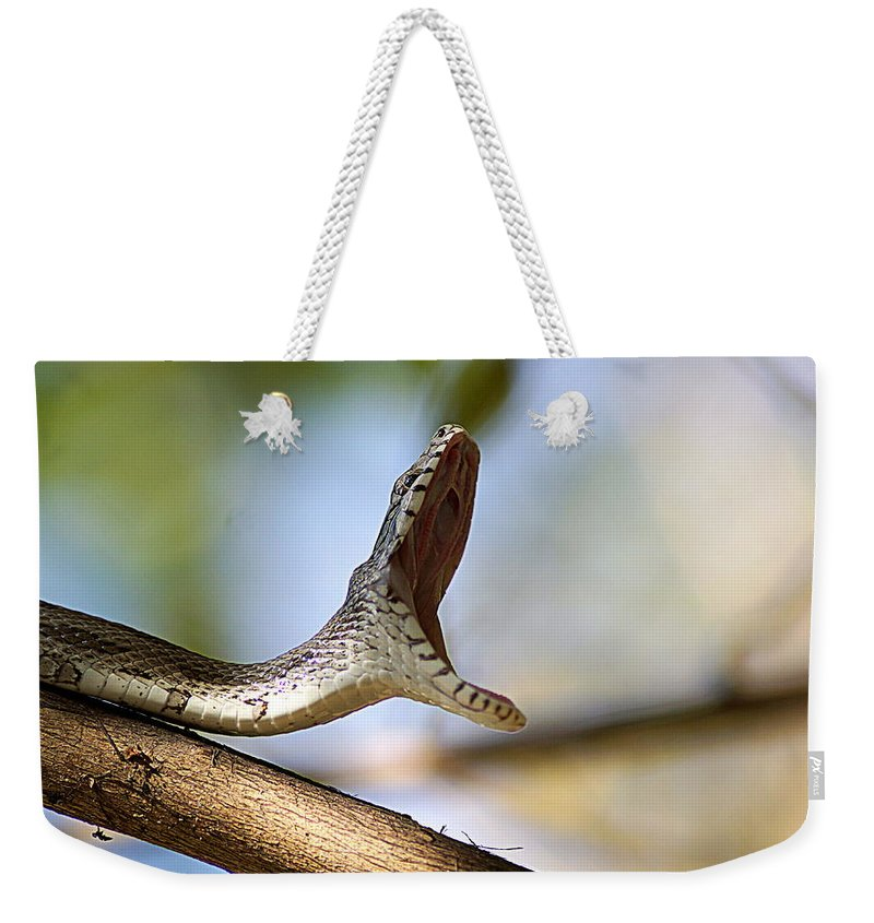 Oak Snake Weekender Tote Bag featuring the photograph Oak Snake by Paul Wilford