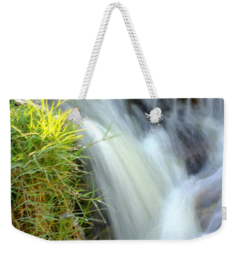 Water Weekender Tote Bag featuring the photograph Oasis by Deb Halloran