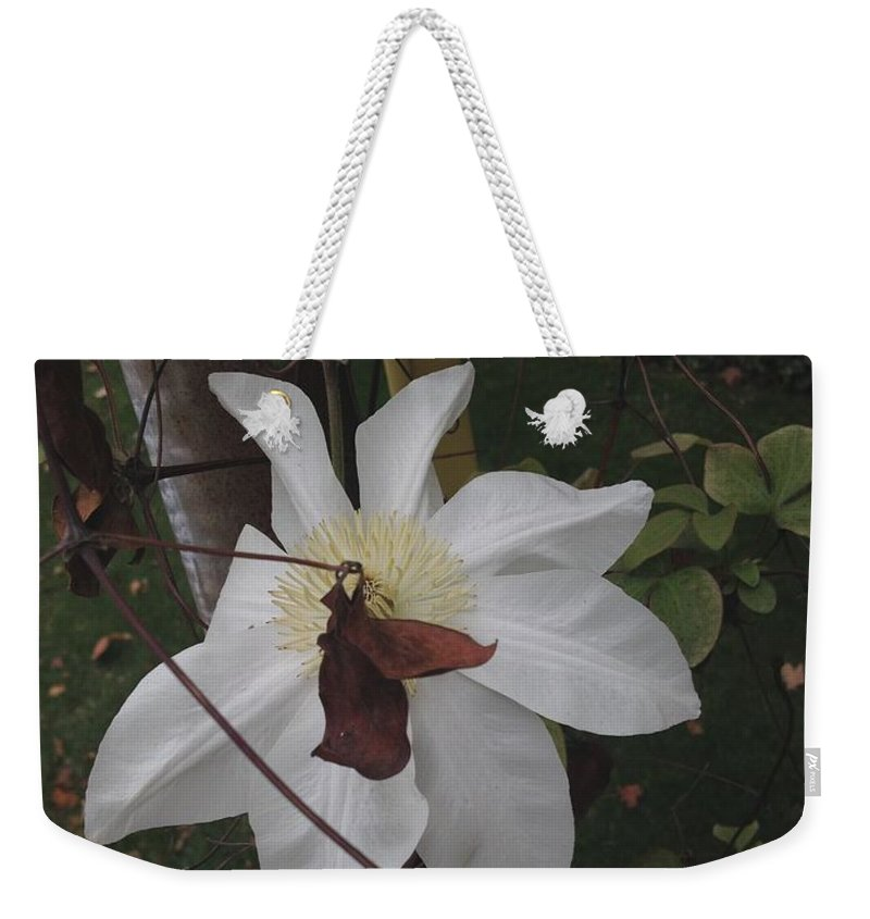 Fall Weekender Tote Bag featuring the photograph Obscured by Joseph Yarbrough