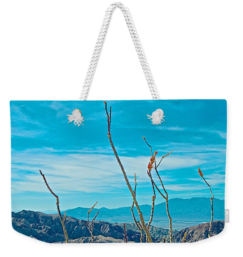 Ocotillo At Top Of Ladder Canyon Trail With Salton Sea In Distance In Mecca Hills Weekender Tote Bag featuring the photograph Ocotillo At Top Of Ladder Canyon With Salton Sea In Distance In Mecca Hills-ca by Ruth Hager