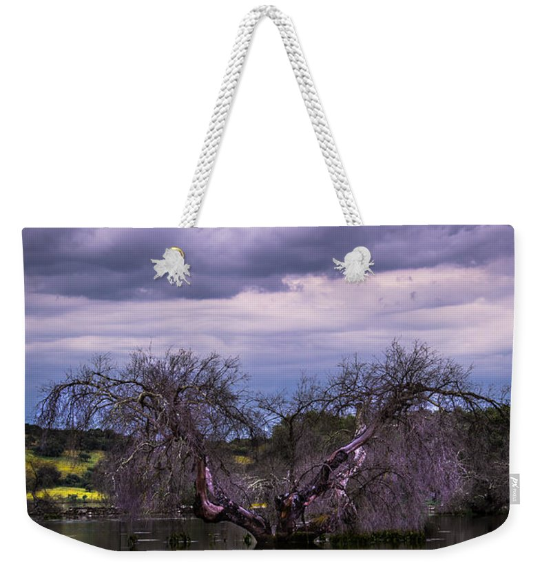 Symmetry Weekender Tote Bag featuring the photograph Odd Symmetry by Edgar Laureano