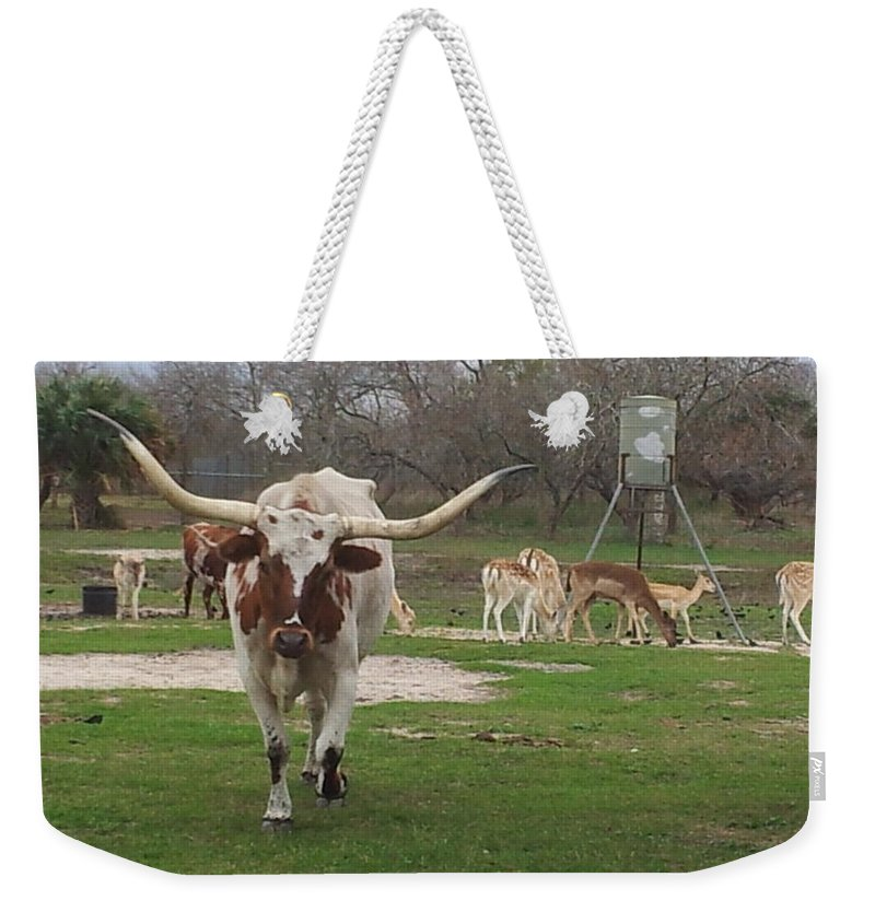Landscape Weekender Tote Bag featuring the photograph Oh Dear by Shawn Marlow