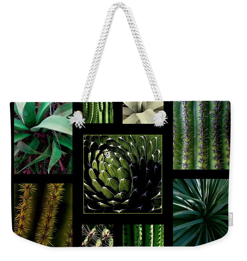 Cactus Weekender Tote Bag featuring the photograph Oh My Cacti by Marlene Burns