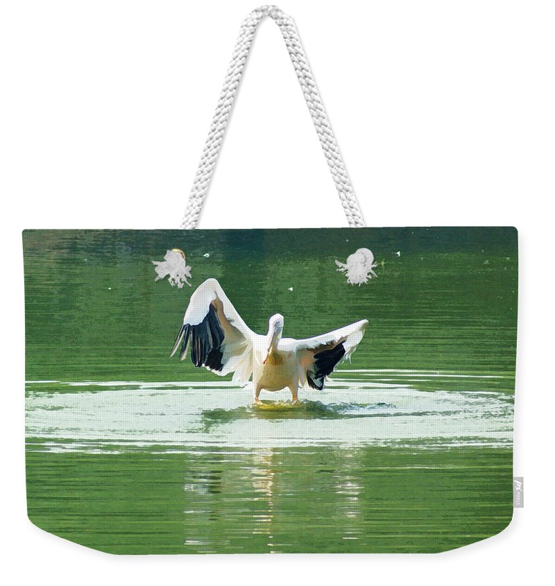 Delhi Weekender Tote Bag featuring the digital art Oil Painting - Pelican Flapping Its Wings by Ashish Agarwal