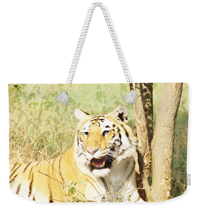Tiger Weekender Tote Bag featuring the photograph Oil Painting - An Alert Tiger by Ashish Agarwal
