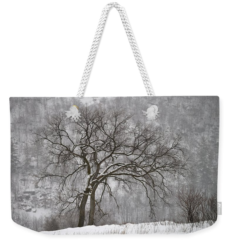 Gatineau Hills Weekender Tote Bag featuring the photograph Old Elm by Joshua McCullough