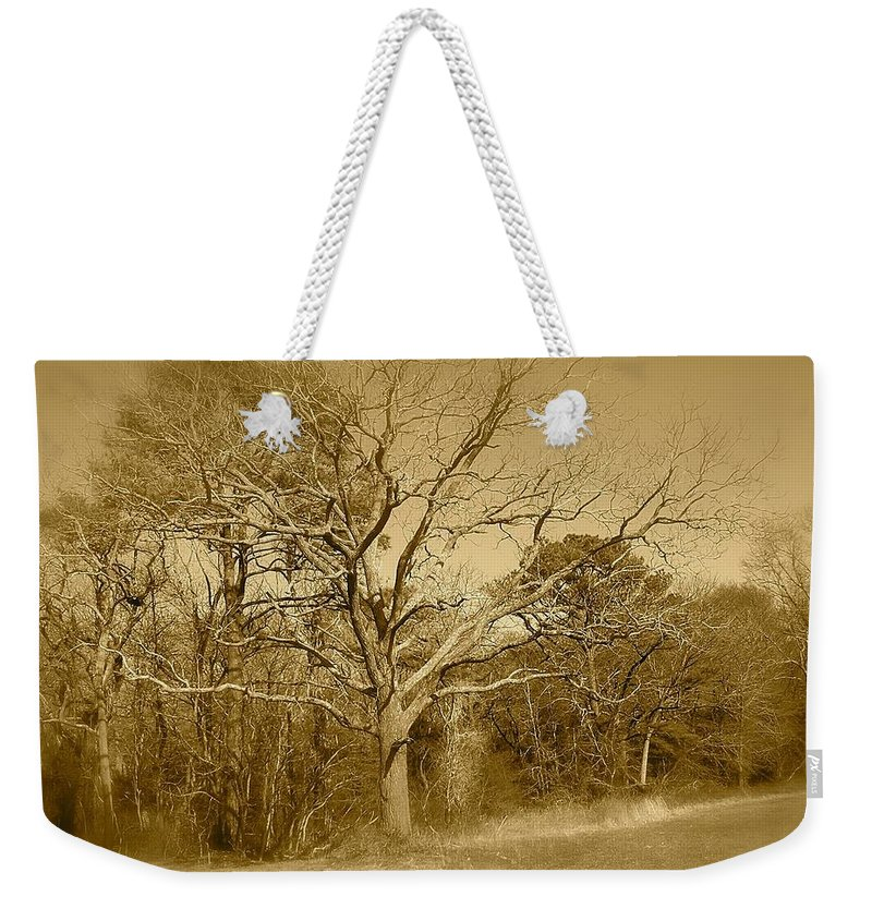Old Weekender Tote Bag featuring the photograph Old Haunted Tree In Sepia by Chris W Photography AKA Christian Wilson