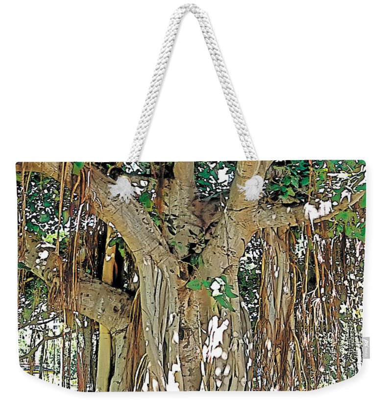Tranquil Weekender Tote Bag featuring the photograph Old Soul by Terry Reynoldson