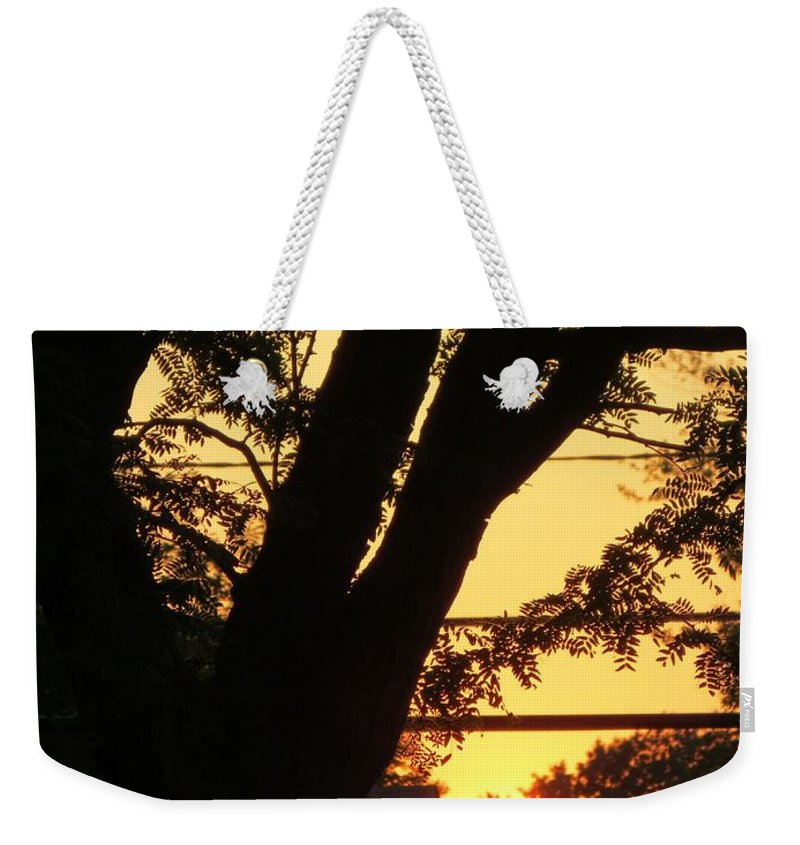 Y Sunset Weekender Tote Bag featuring the photograph Old Tree And Sunset by Sonali Gangane