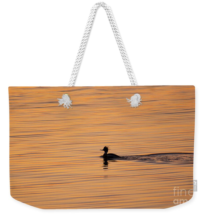 Duck Weekender Tote Bag featuring the photograph On Painted Waters by Joe Geraci