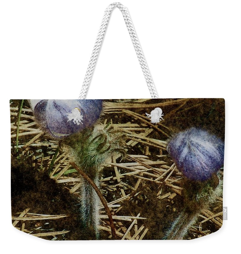 Colorado Weekender Tote Bag featuring the painting On The Forest Floor by RC DeWinter
