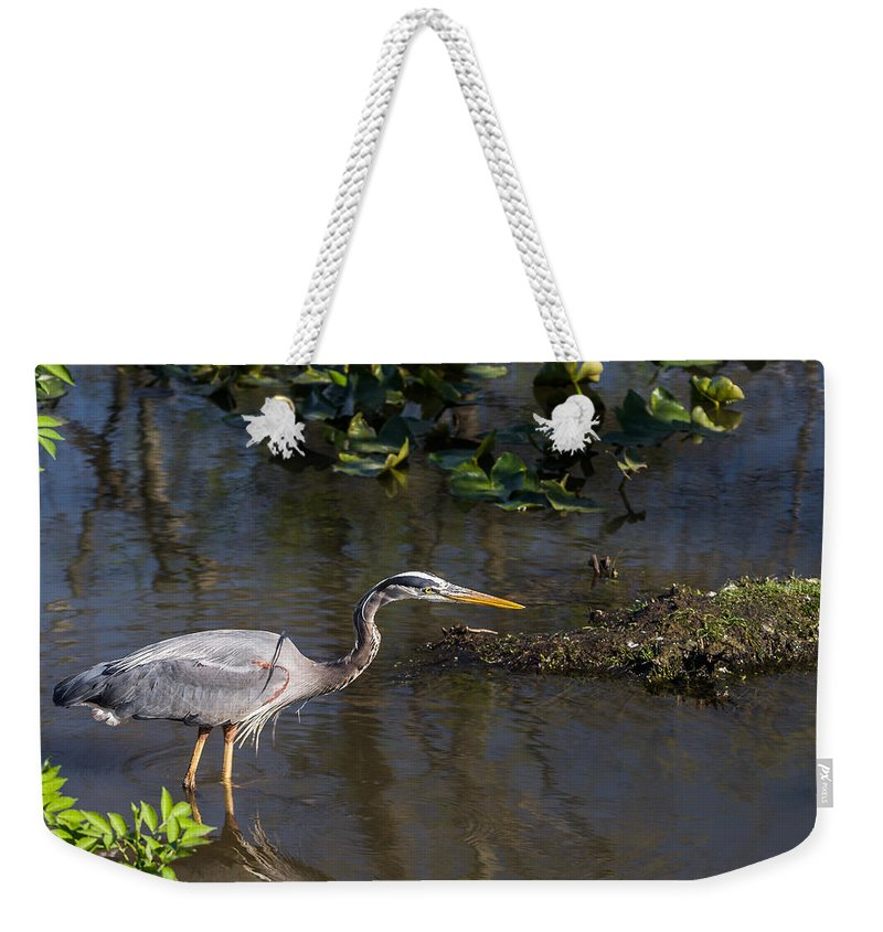 On The Prowl Weekender Tote Bag featuring the photograph On The Prowl by Dale Kincaid