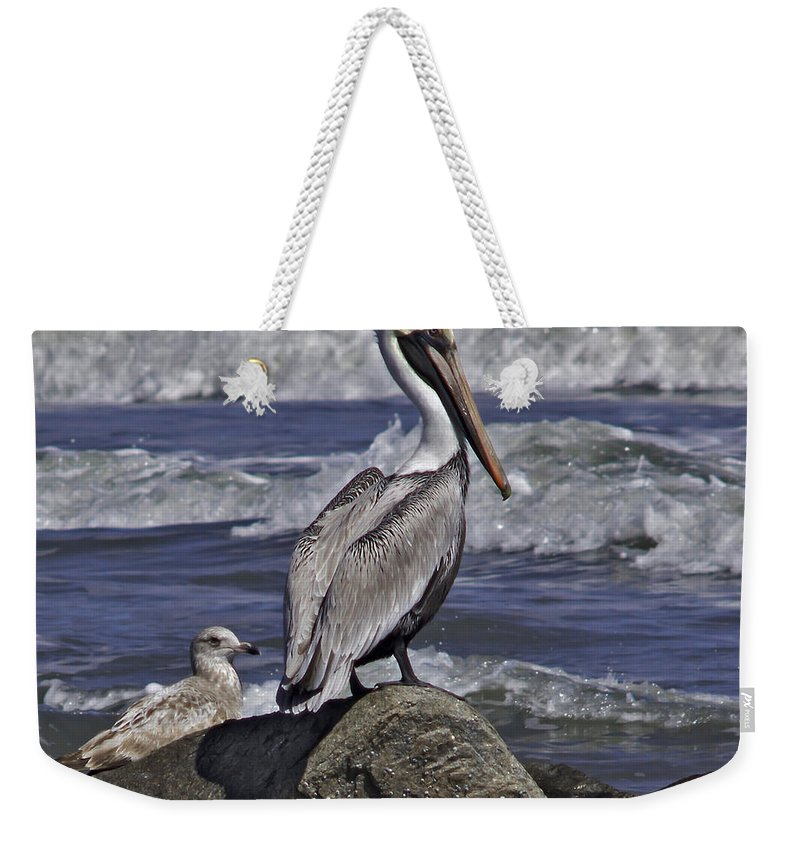 Brown Pelican Weekender Tote Bag featuring the photograph On The Rocks by James Ekstrom
