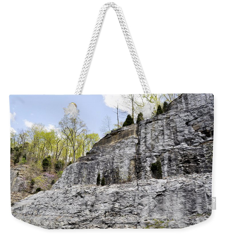 Mountain Weekender Tote Bag featuring the photograph On The Side Of The Mountain by Verana Stark