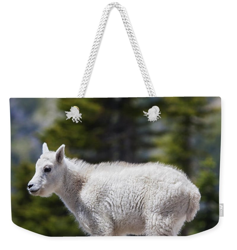 Mountain Goat Weekender Tote Bags