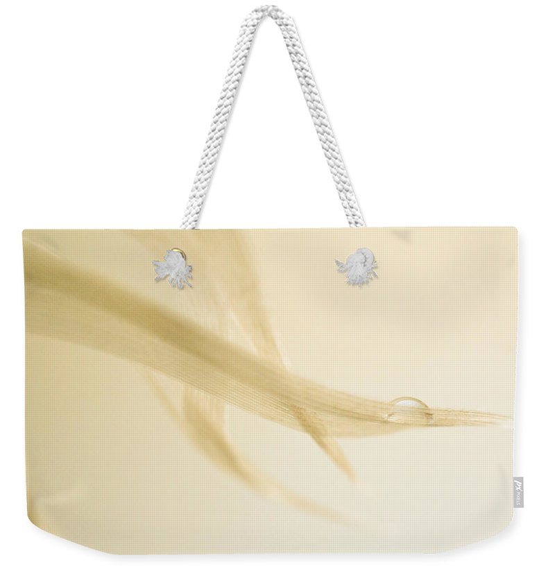 Feather Weekender Tote Bag featuring the photograph One Drop Of Water by Bob Orsillo