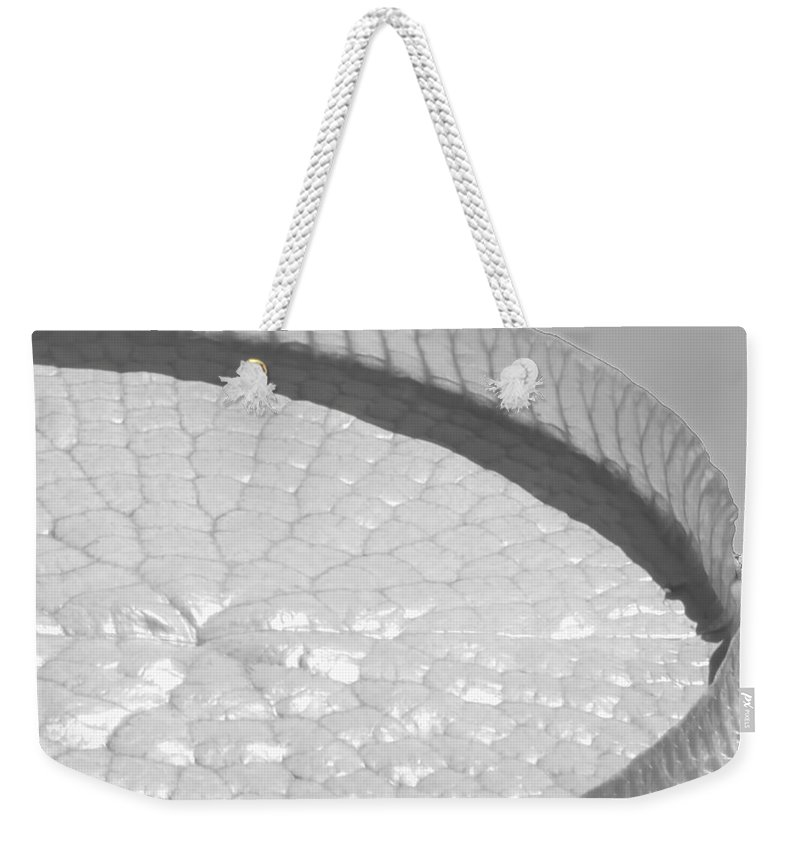 Landscape Weekender Tote Bag featuring the photograph One Huge Lily Pad #3b by Sabrina L Ryan